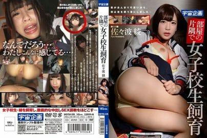 หนังโป๊ญี่ปุ่น